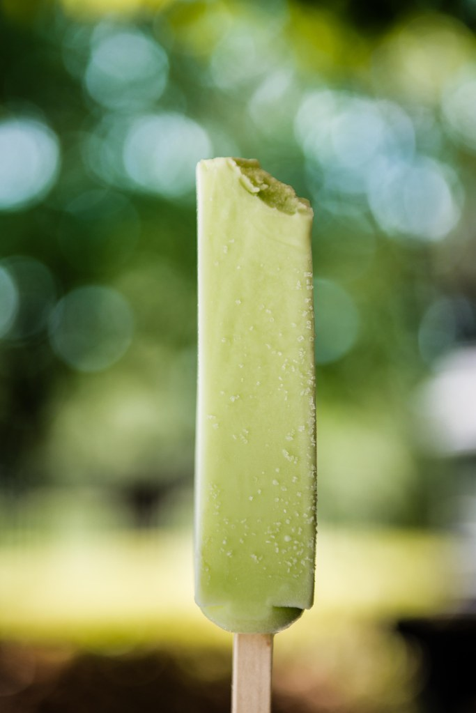 Honeydew popsicles to top off our lunch.