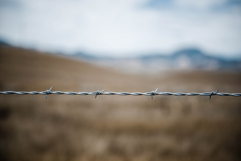 Barbed wire. Spiky!