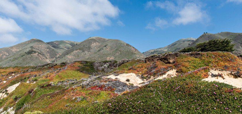 Monterey-Carmel-2